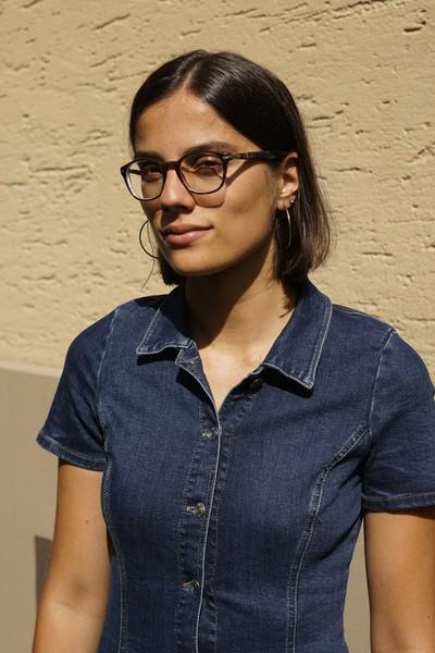 Adelina Gashi, Redaktorin